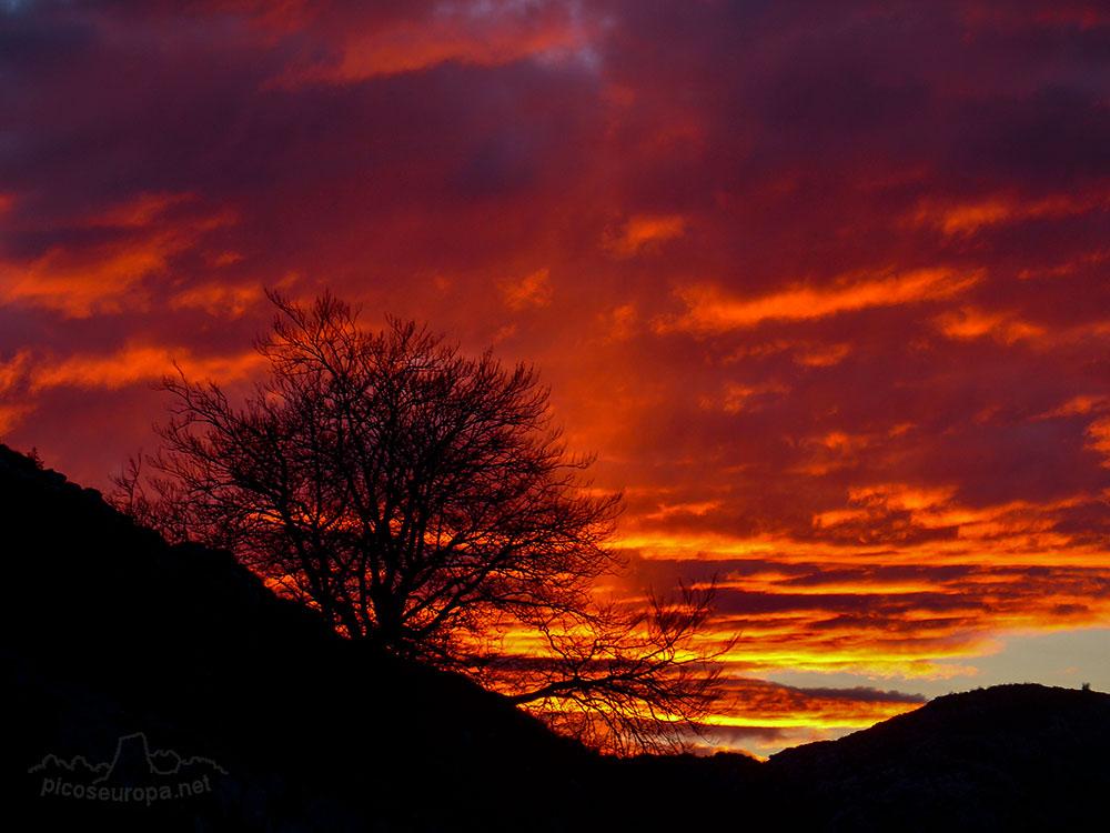 Fotos de amaneceres y puestas de sol for Puesta de sol