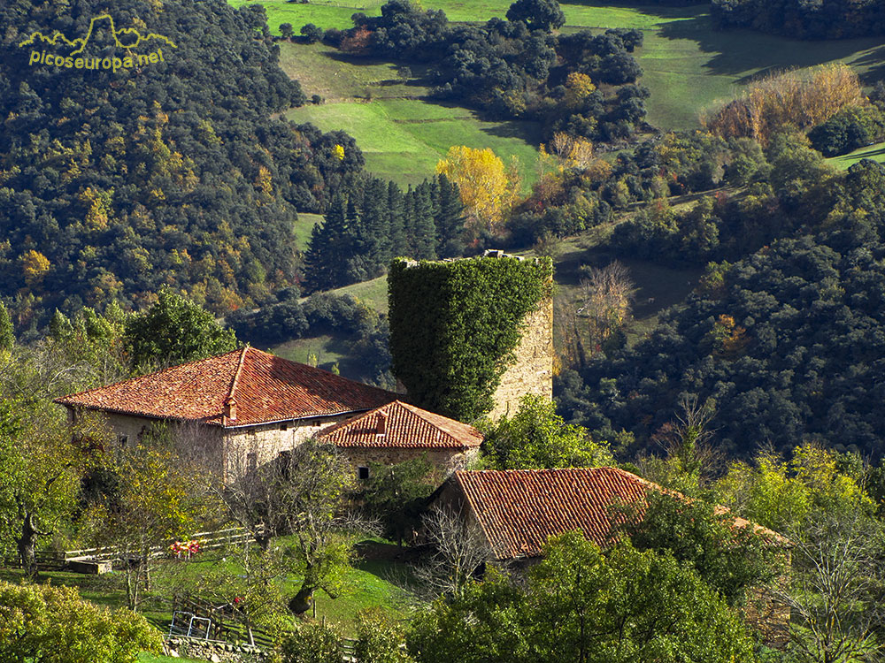 Mogrovejo valle de liebana macizo oriental de picos de for Casas de pueblo en cantabria