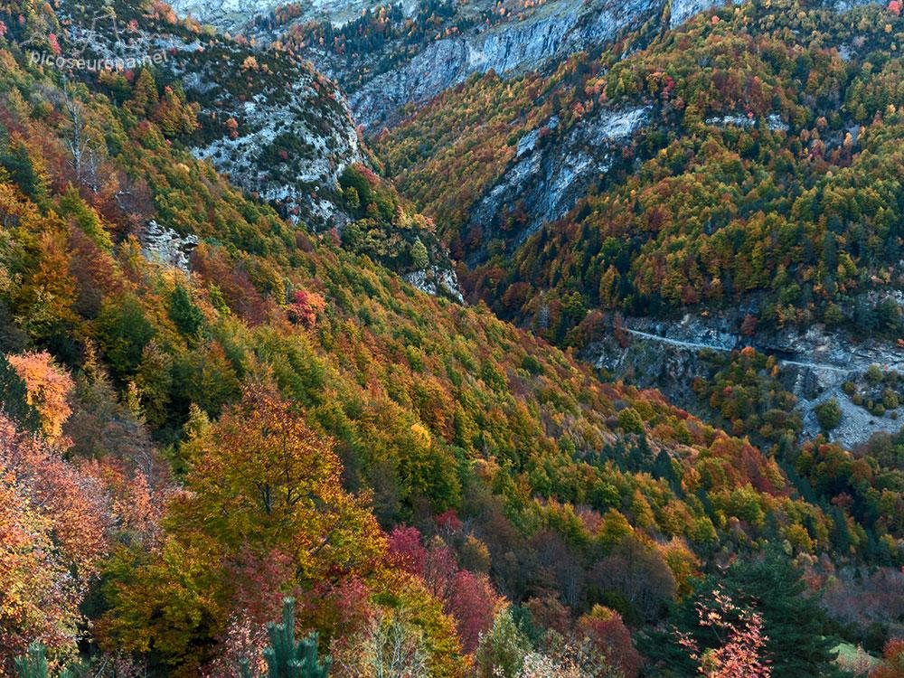 Fotos: Otoño en San Nicolas de Bujaruelo, Parque Nacional de Ordesa y Monte Perdido, Pirineos de Huesca