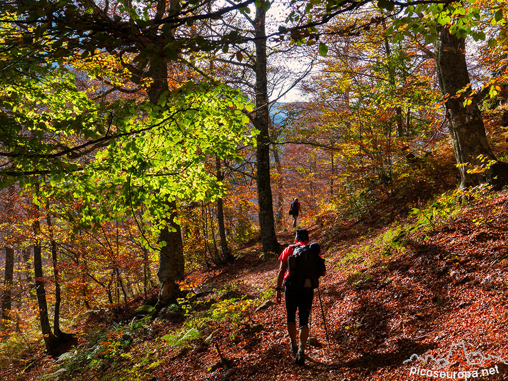 Fotos de paisajes de otoño