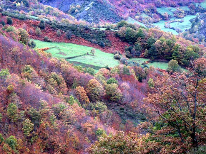 Posada de valde n le n parque nacional de picos de - Lugares con encanto ...